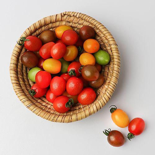 5색 컬러 방울토마토 1.5kg /3kg